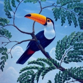 The Perch of the Toucan